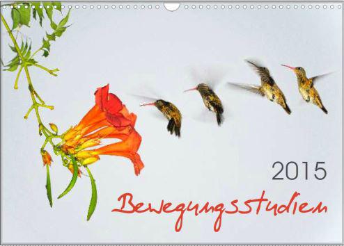 Kalender-Bewegungsstudie_web